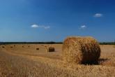 BELCZNA-krajobraz-2009-005