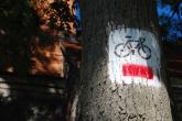BONIN-szlak-czerwony-2008-001